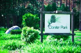 Photo of Conifer Park